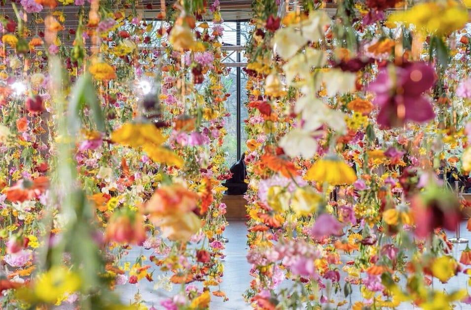 Haus der Blumen